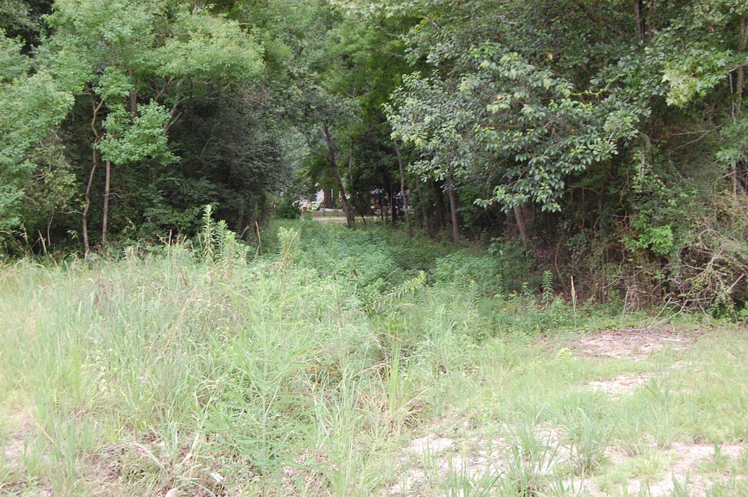 Wonderful Acreage on the Edge of Hattiesburg, Mississippi - Image 6