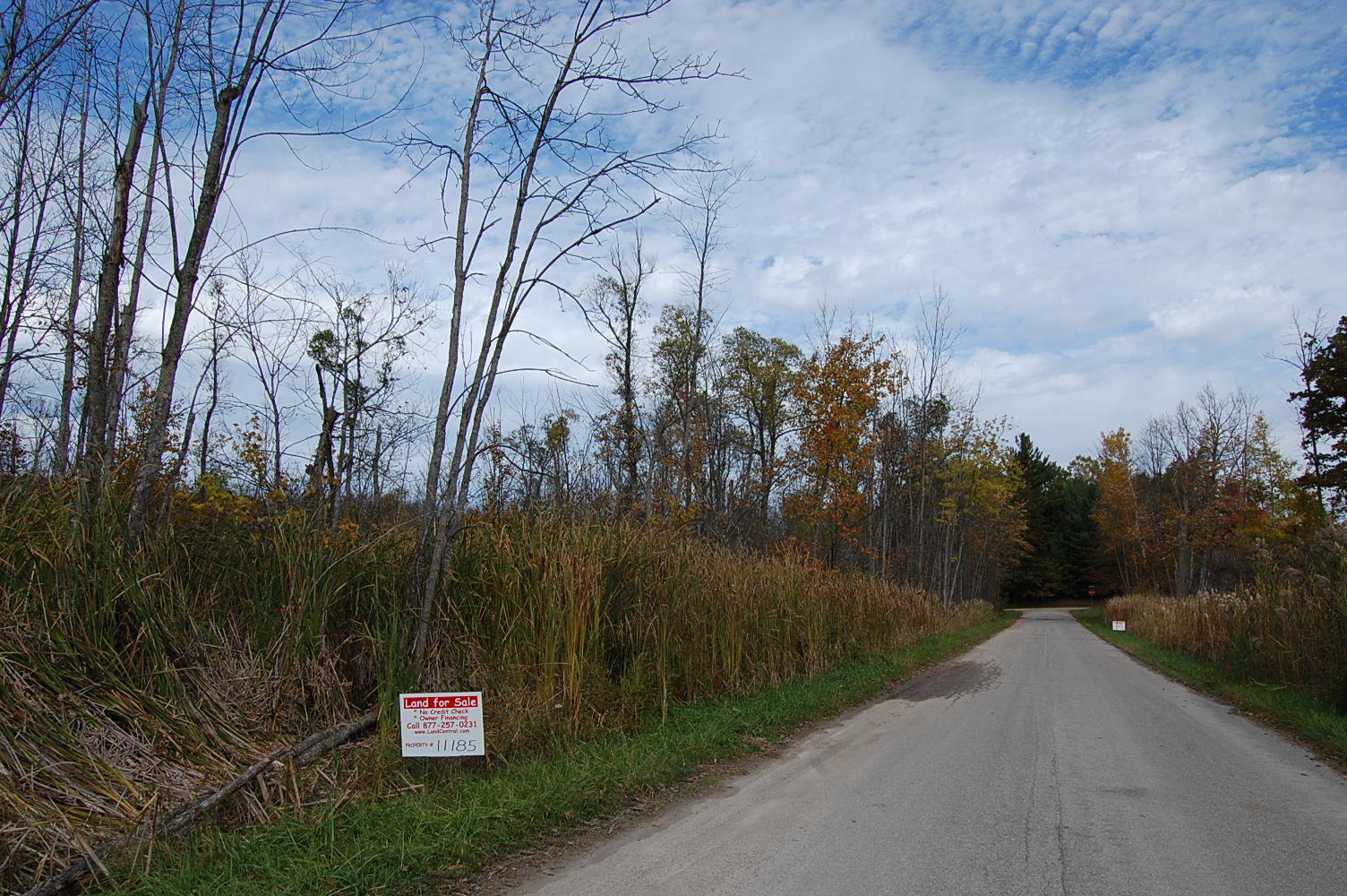 Acreage Just Steps From Townline Lake - Image 4
