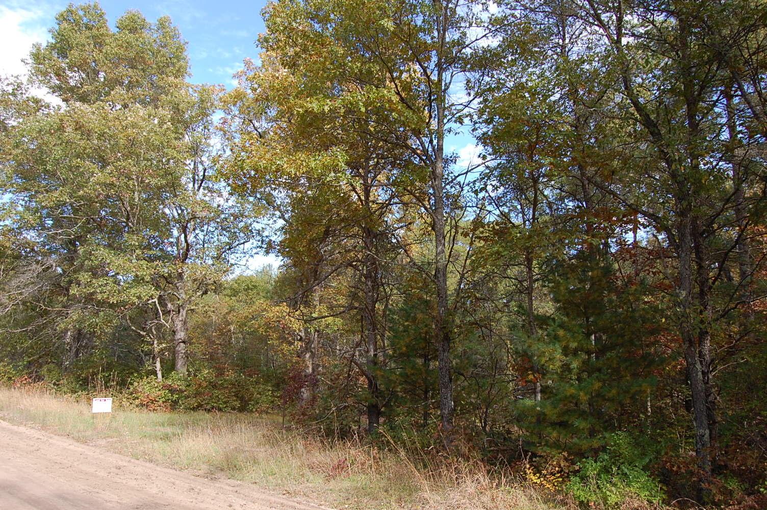 Rare RV Camping Property in Baldwin Michigan - Image 4