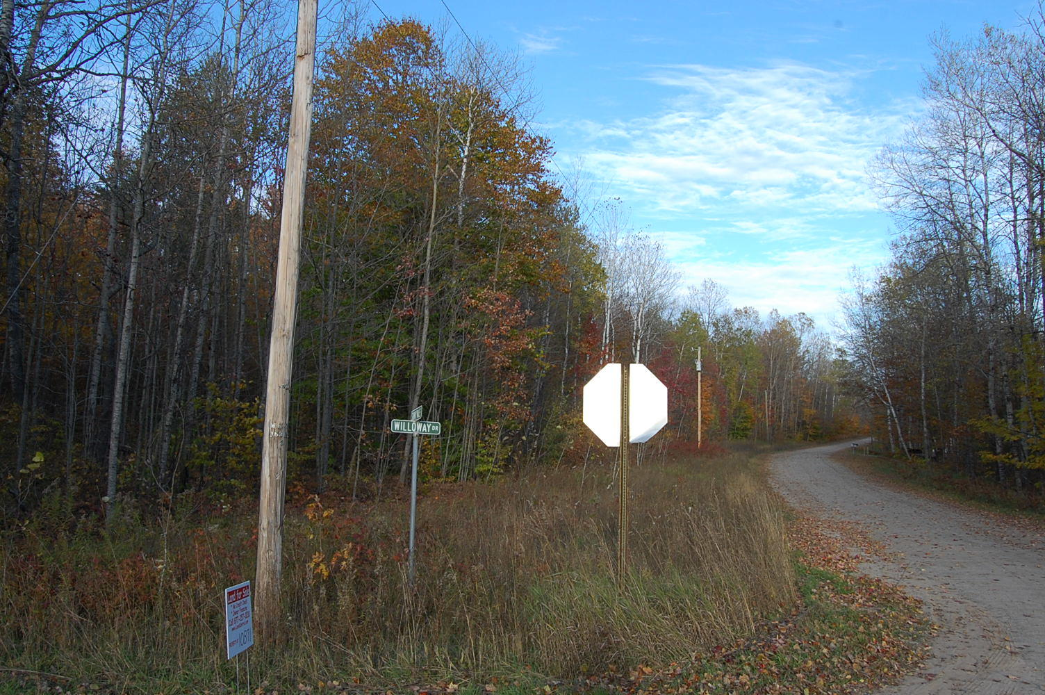 More than Half Acre in Picturesque Michigan - Image 3