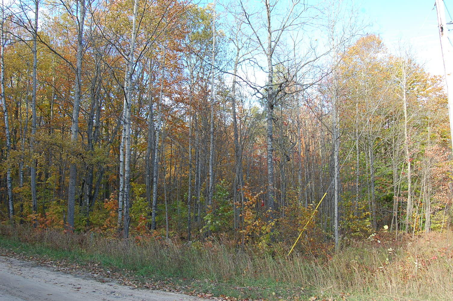 More than Half Acre in Picturesque Michigan - Image 4