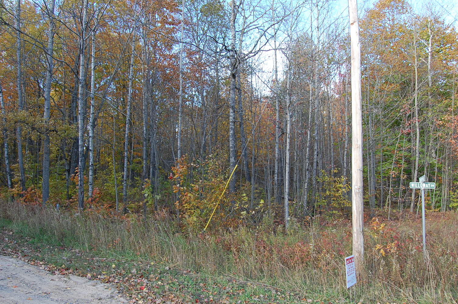 More than Half Acre in Picturesque Michigan - Image 0