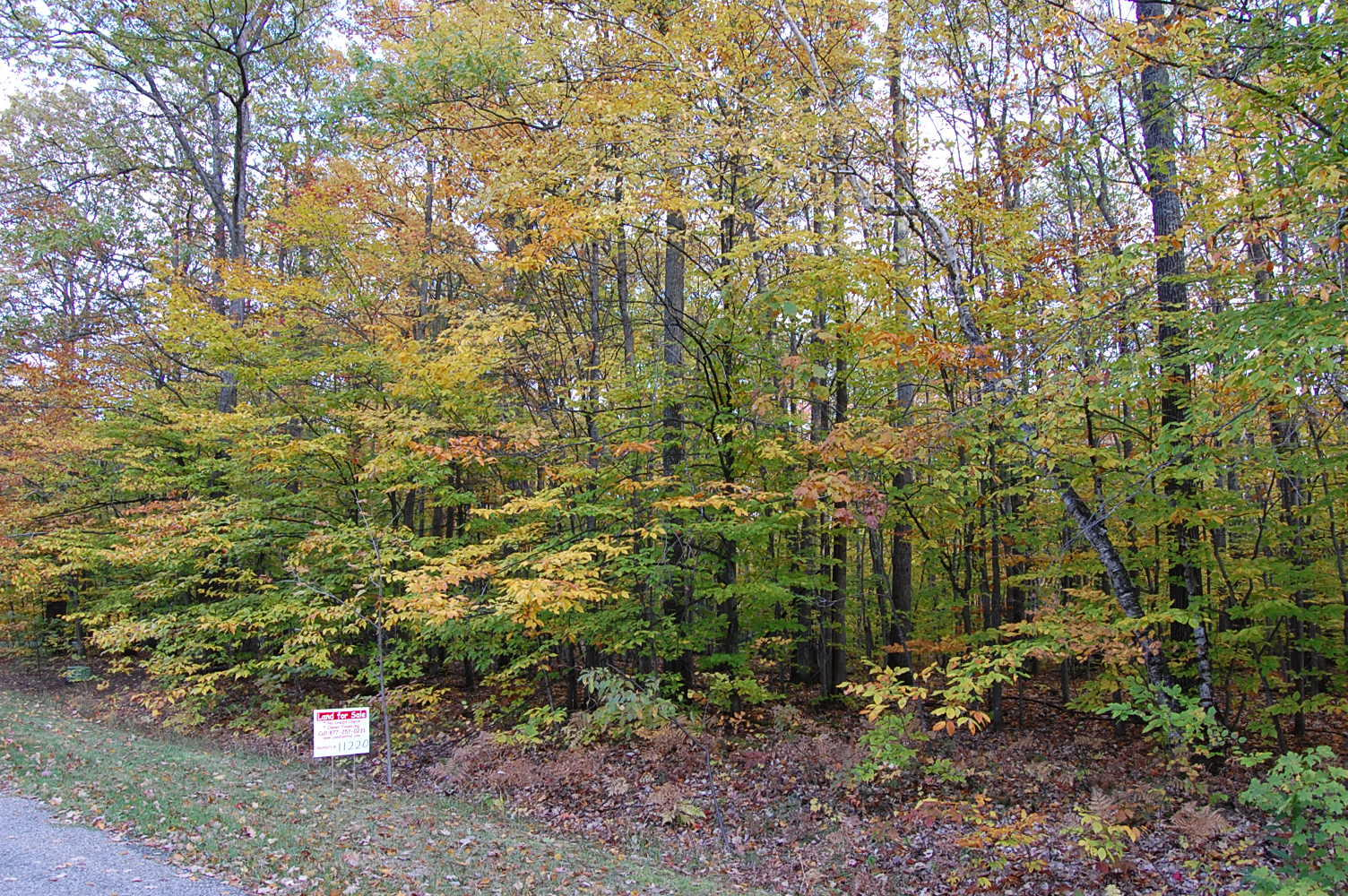 Perfect Property in Scenic Michigan Town - Image 0