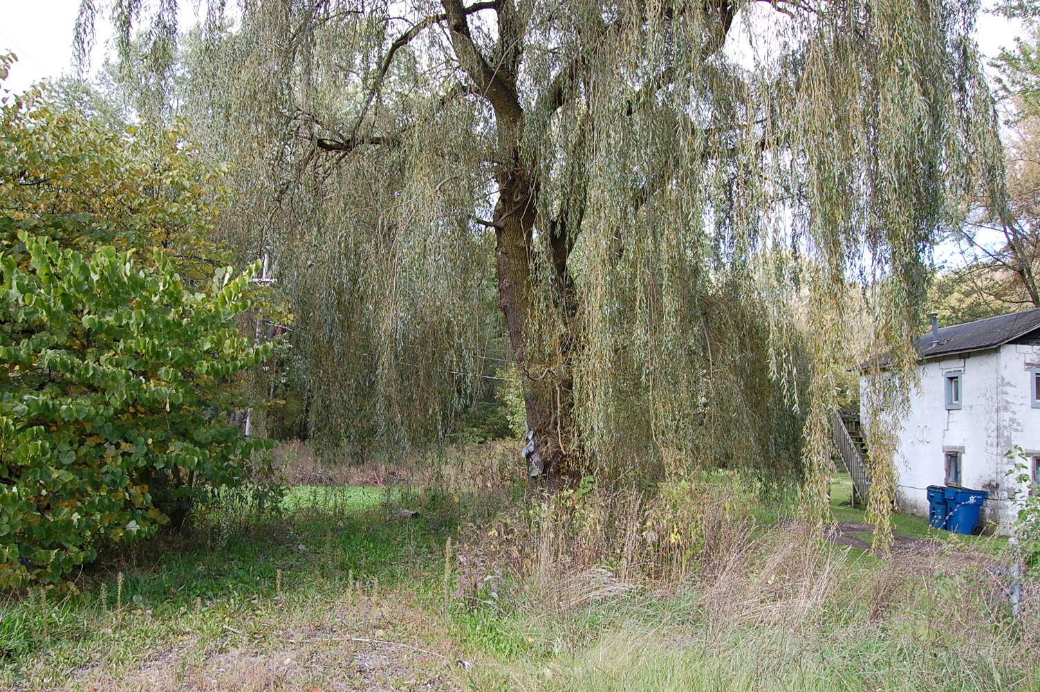 Property Near the Kalamazoo River - Image 3