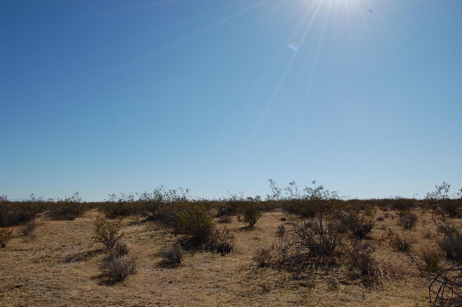 Hi Vista California Rural Acreage - Image 1