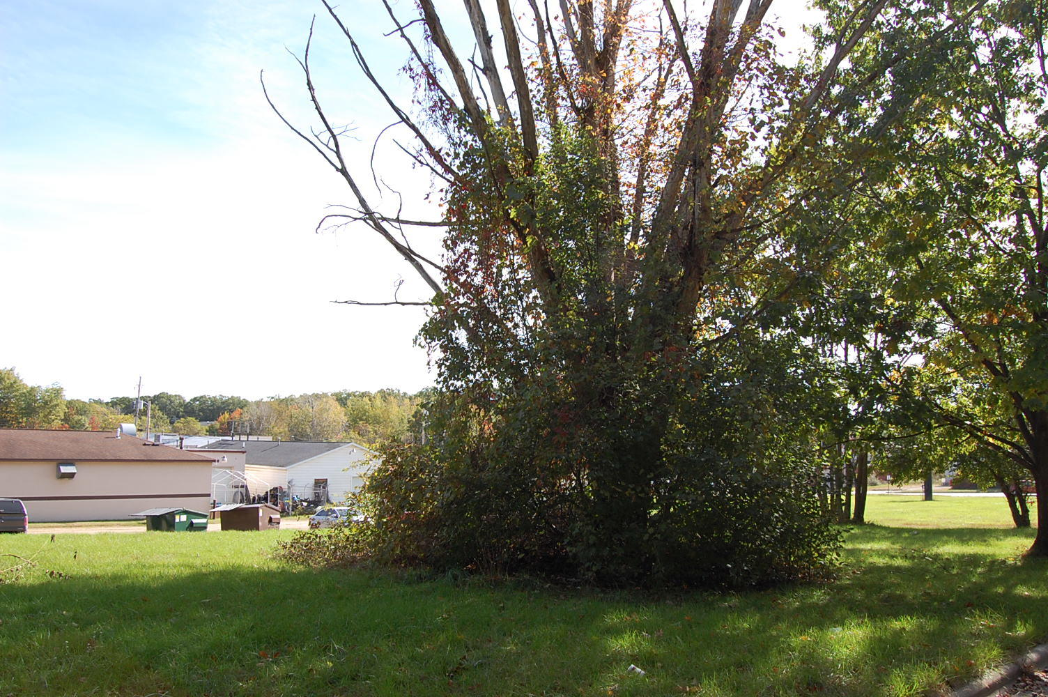 Invest in Your Dream Business With This Michigan Commercial Parcel - Image 4