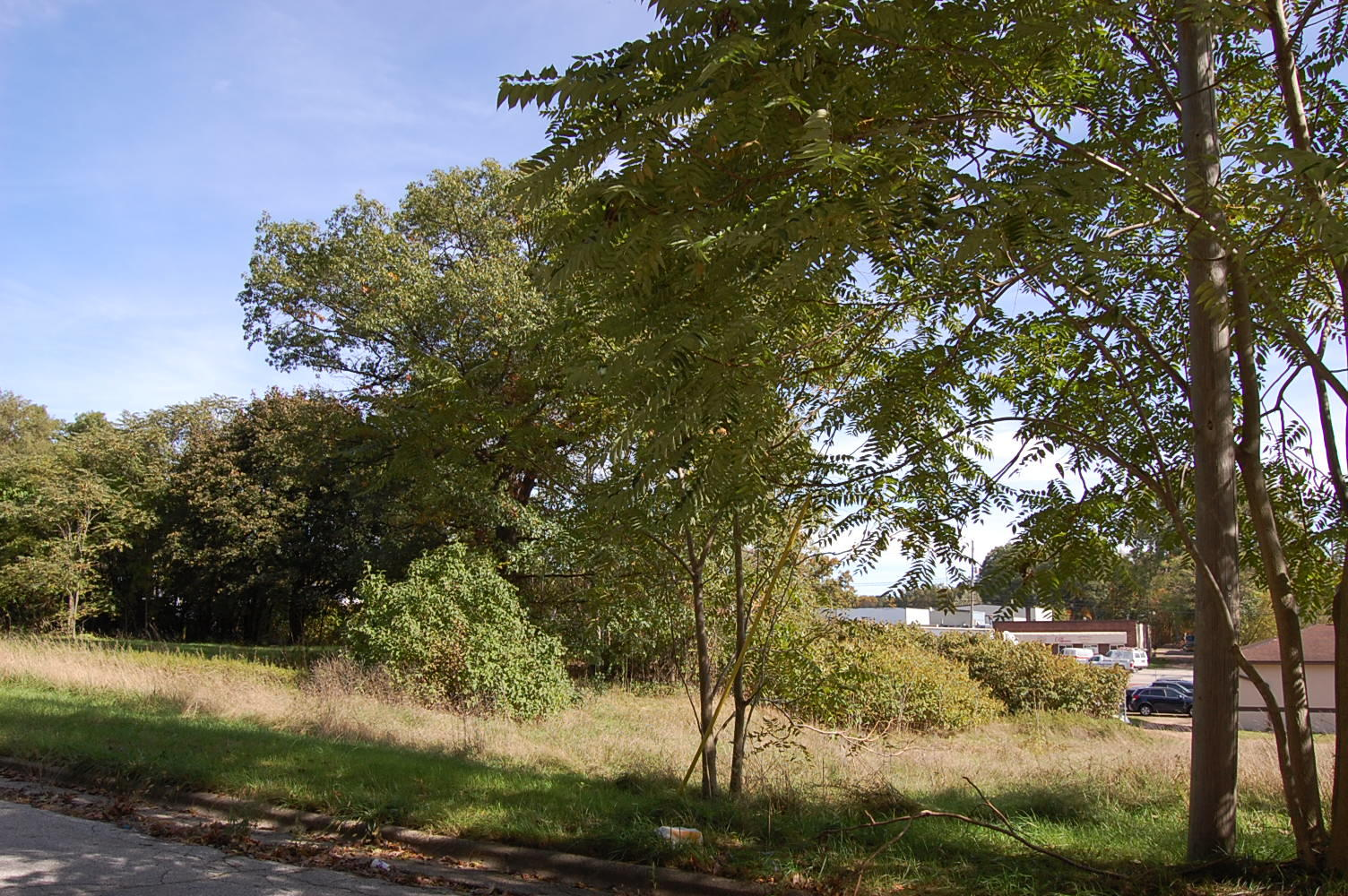 Invest in Your Dream Business With This Michigan Commercial Parcel - Image 1
