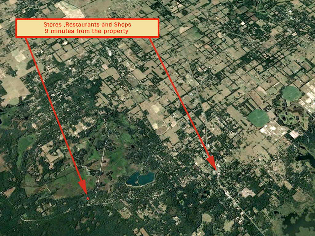 Affordable Florida Lot in Popular Marion County Florida - Image 7