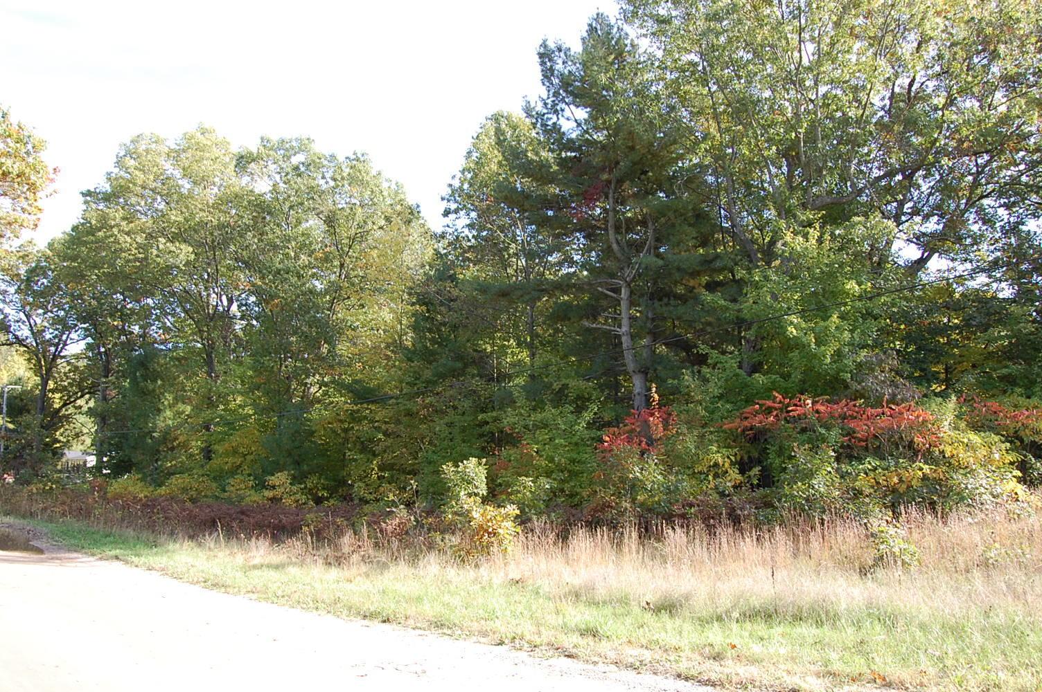 Large Corner Property Near Lake Michigan - Image 4