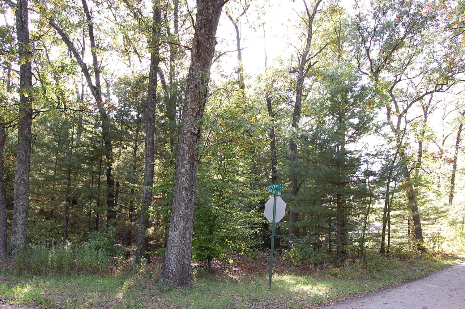 Treed Half Acre Near Lake Michigan - Image 4