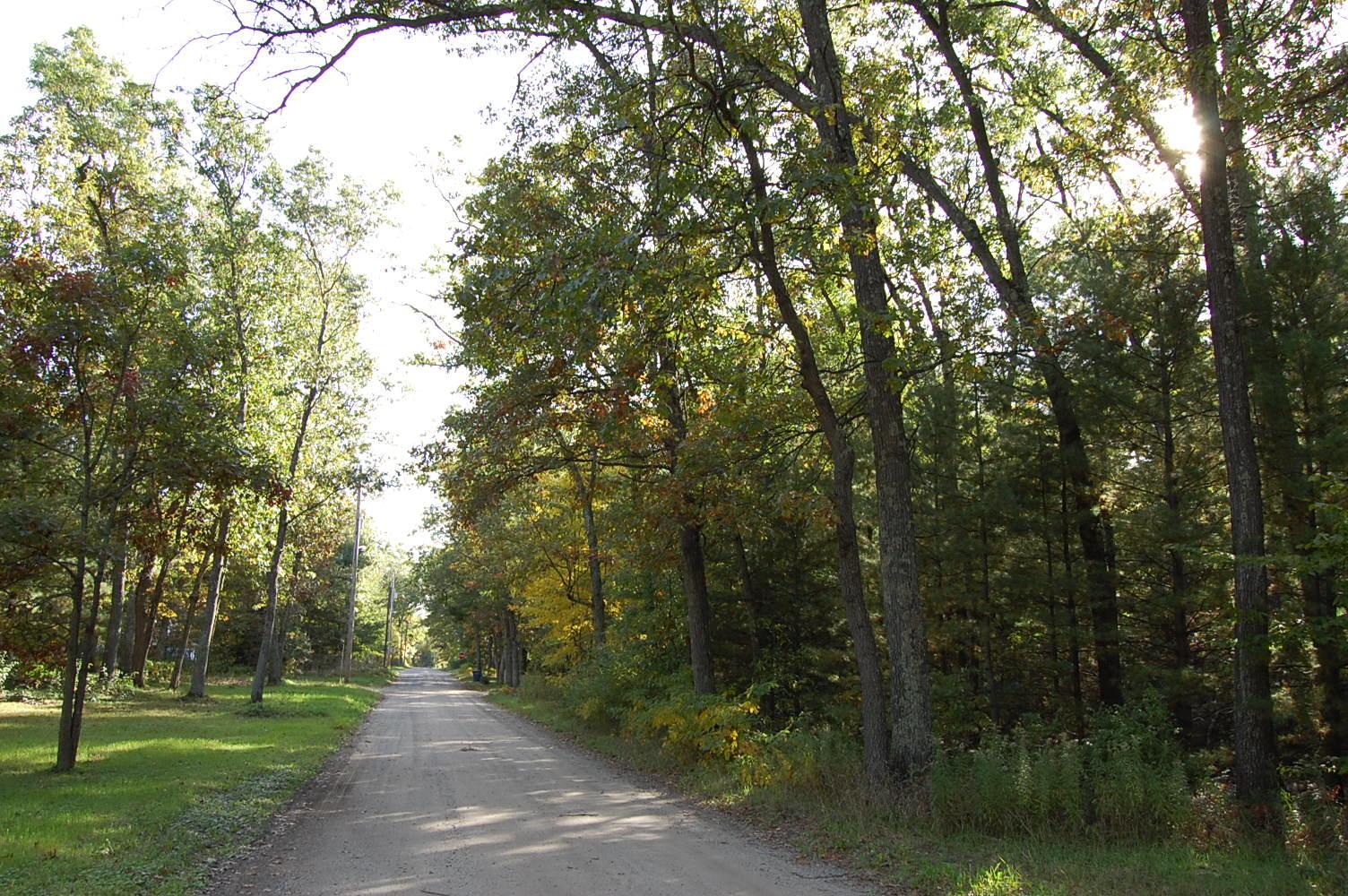 Treed Half Acre Near Lake Michigan - Image 5