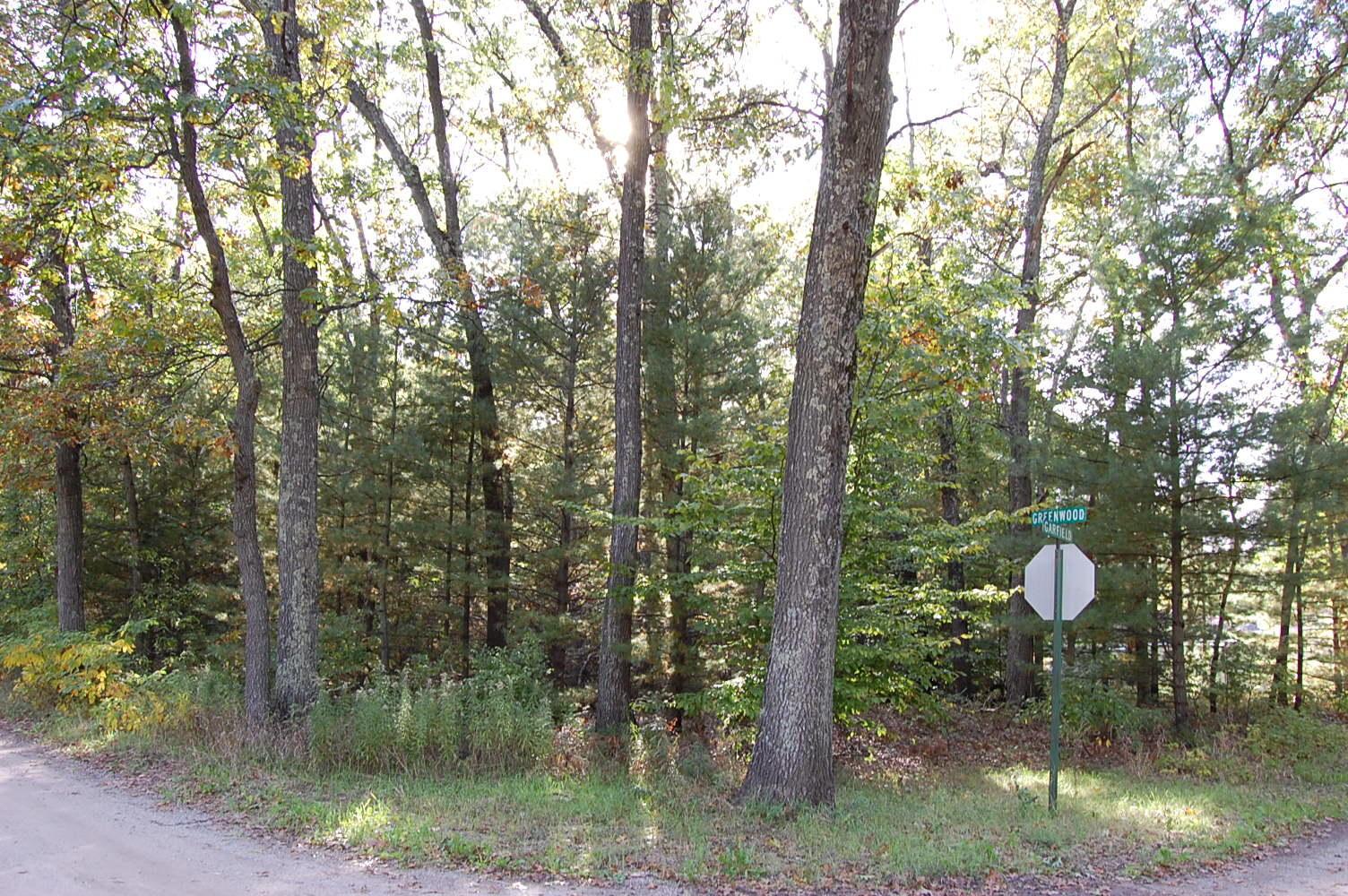 Treed Half Acre Near Lake Michigan - Image 0