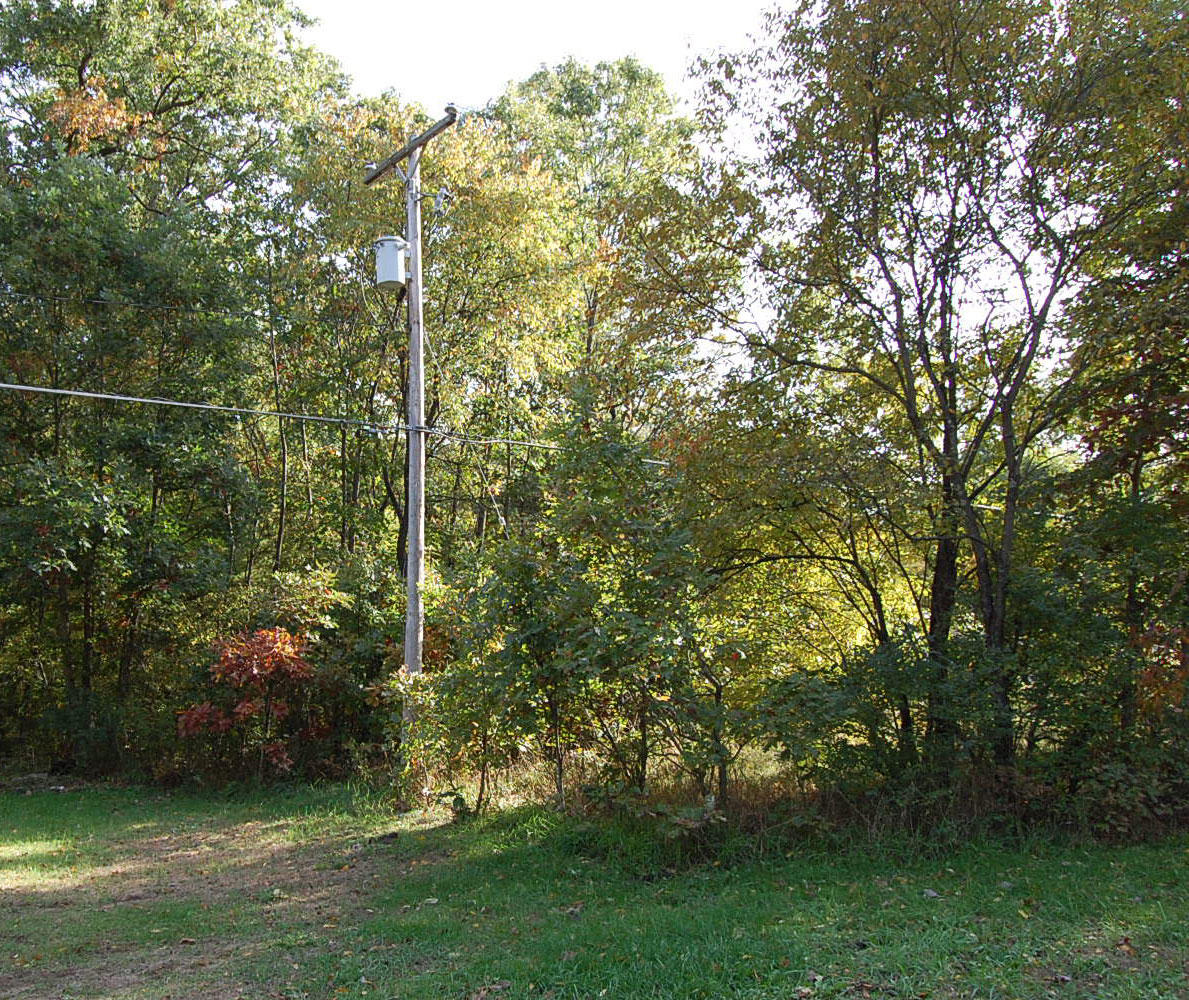 Great Michigan Residential Lot in Holton - Image 6