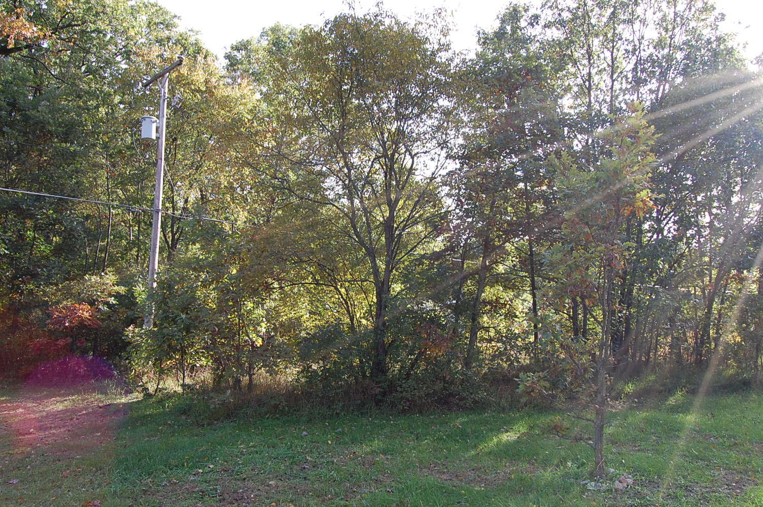 Great Michigan Residential Lot in Holton - Image 1