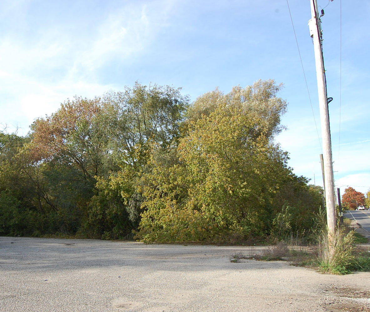 City of Holton Commercial Lot - Image 5