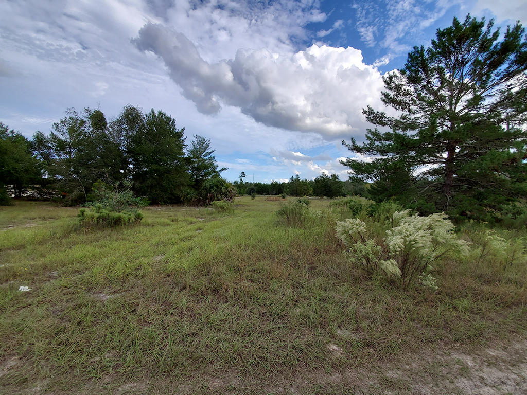 Private Acreage Near Palm Coast of Florida - Image 4