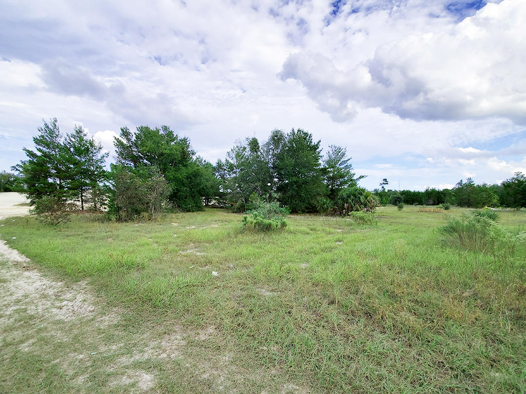 Private Acreage Near Palm Coast of Florida - Image 1