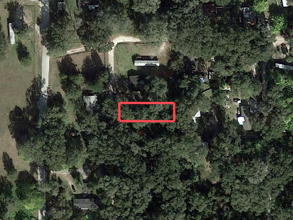 Reddick Florida Residential Acreage - Image 2