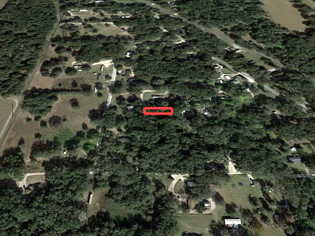 Reddick Florida Residential Acreage - Image 3