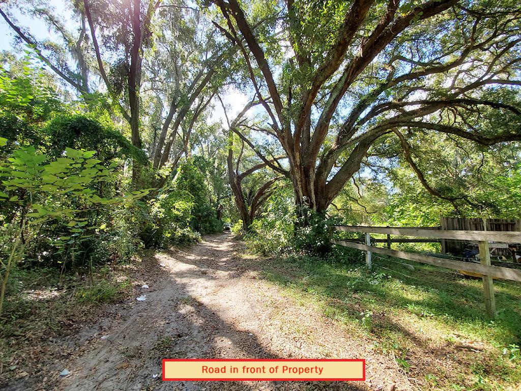 Reddick Florida Residential Acreage - Image 6