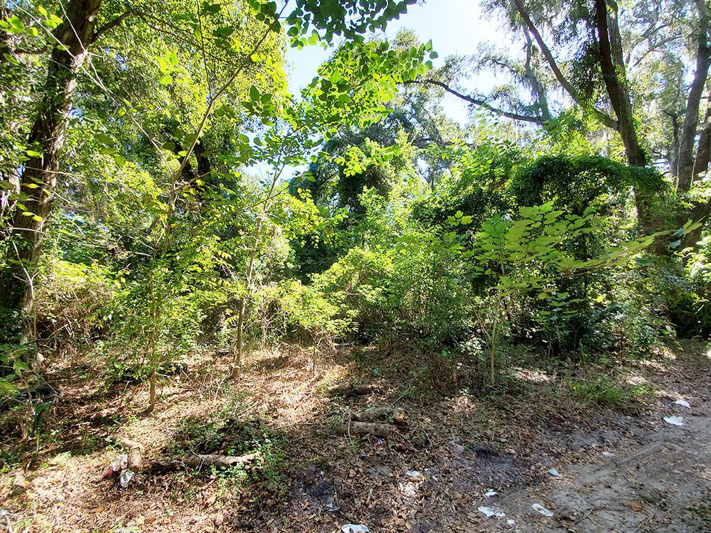 Reddick Florida Residential Acreage - Image 1