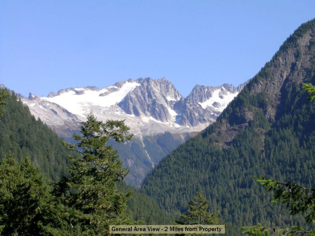 Tree-Covered Washington Paradise Near Cascade River - Image 2
