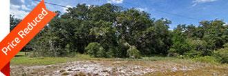 Central Florida Property in Avon Park