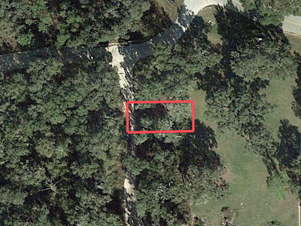 Charming Lot in Citra Florida - Image 1