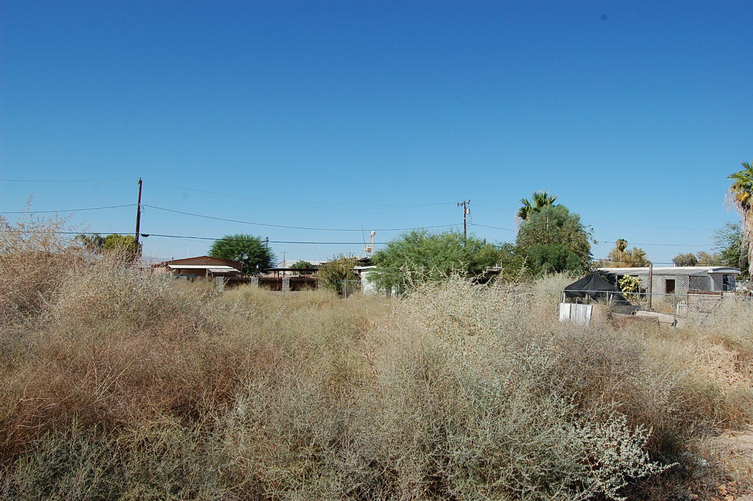 Lot in Small Agricultural Community - Image 3