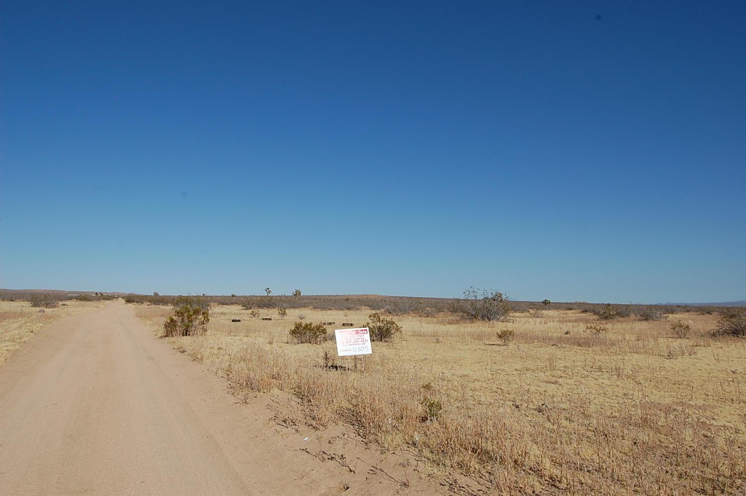 2.67 Acre Big City Getaway - Image 5
