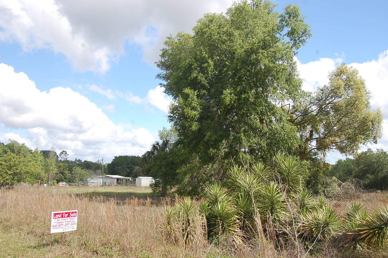 Half Acre Pacel in Satsuma Florida - Image 1