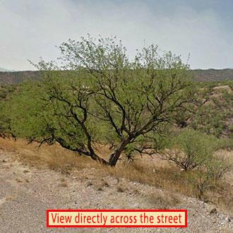 Over One and A Half Acre Santa Cruz Parcel - Image 1