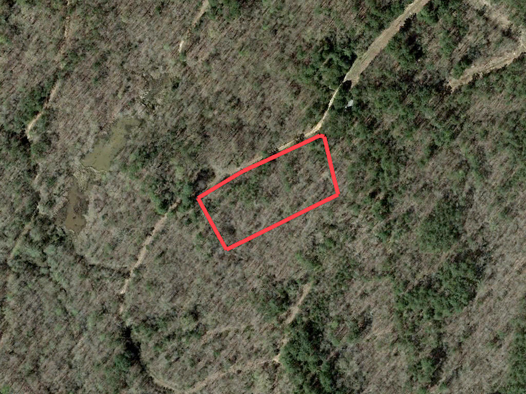 Almost Two Acres Near Grenada Lake - Image 2
