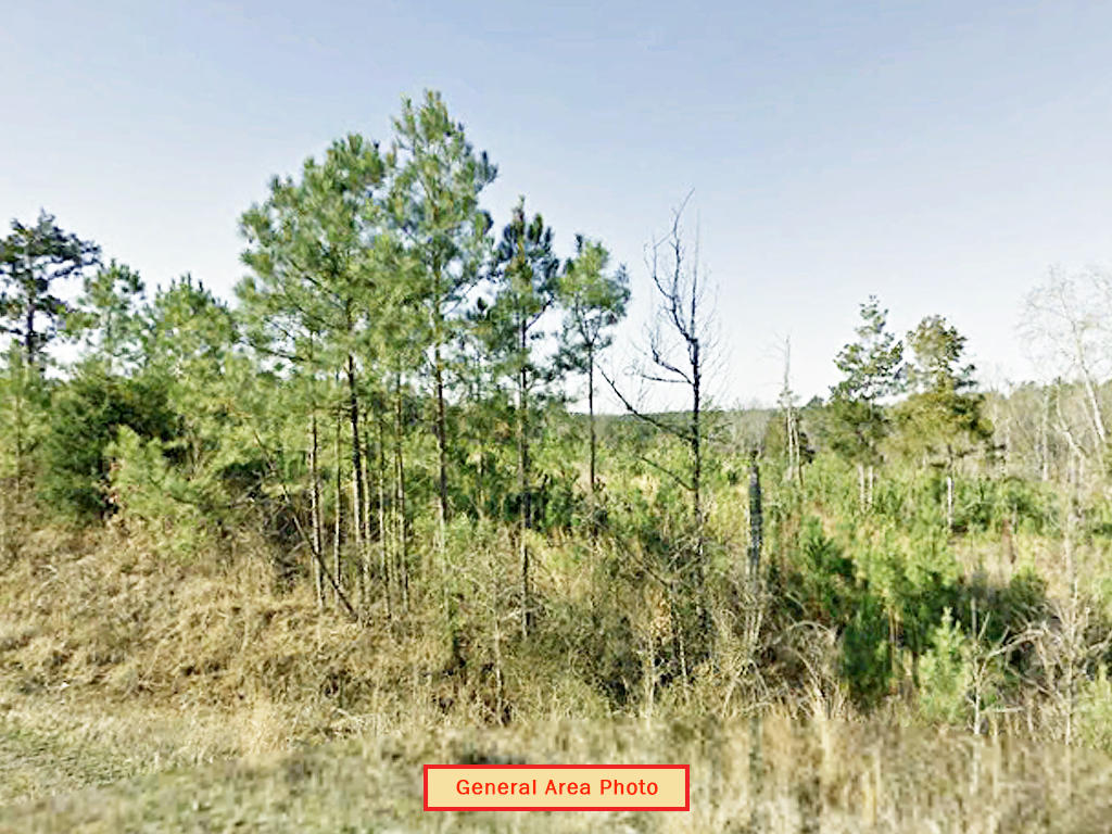 Almost Two Acres Near Grenada Lake - Image 1