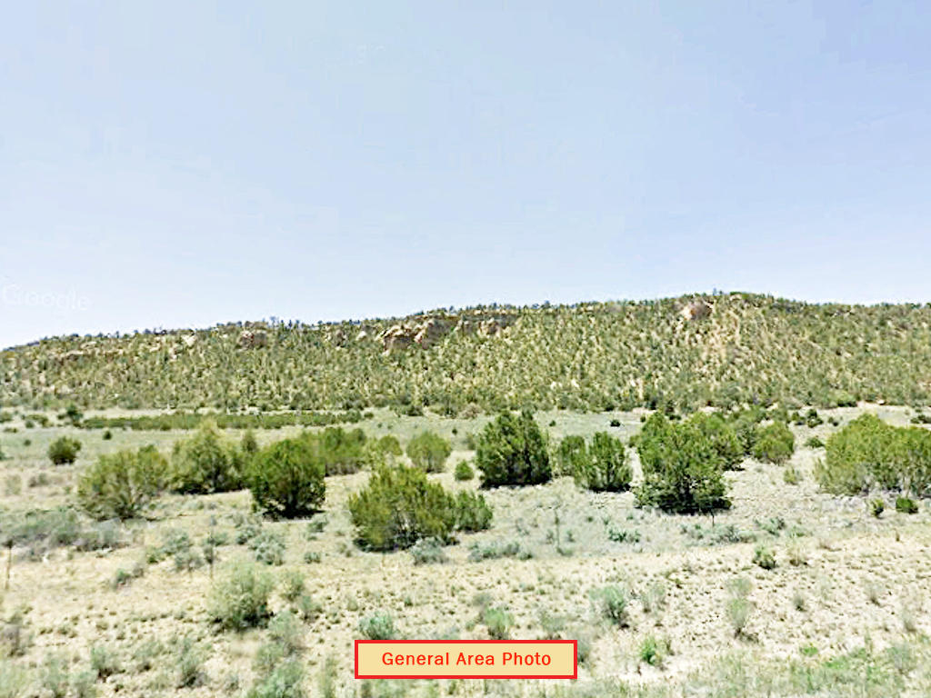 Over 5 Acre Northwest New Mexico Tract - Image 3
