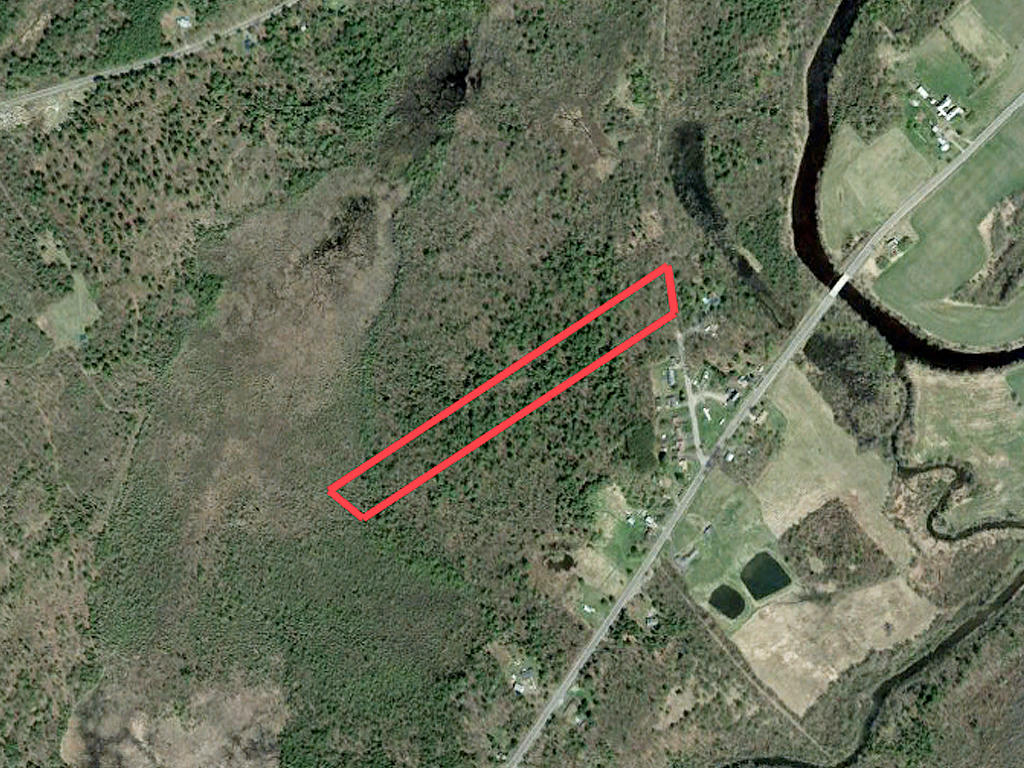 Sprawling 10 Acres Near State Forest - Image 1