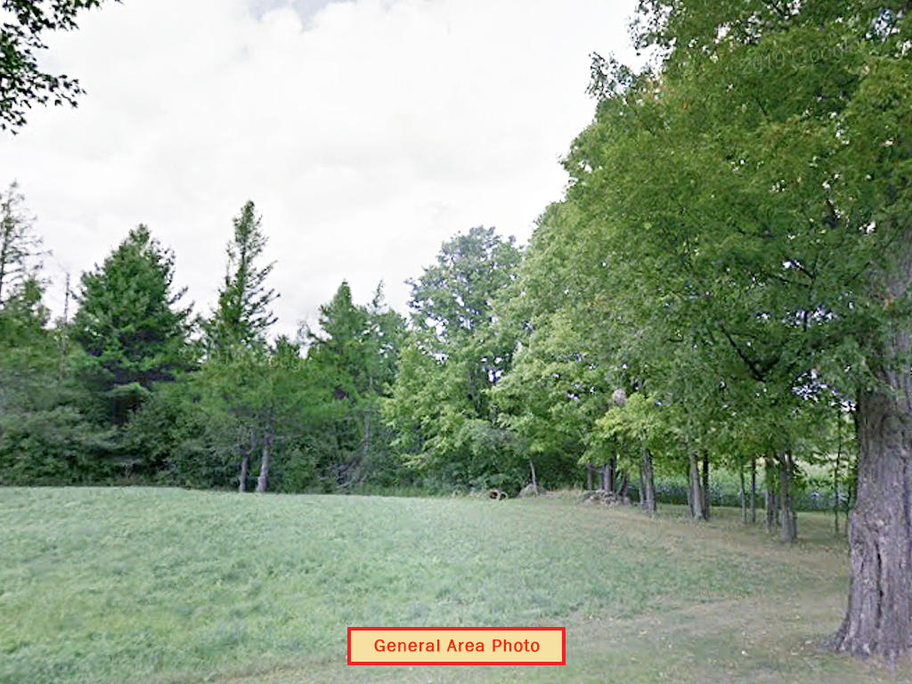 Sprawling 10 Acres Near State Forest - Image 4