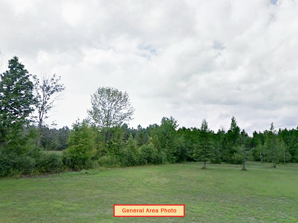 Sprawling 10 Acres Near State Forest - Image 0
