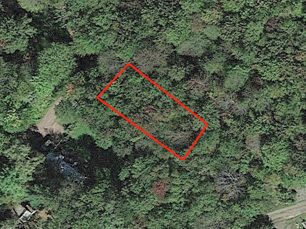 Un-Zoned Lot Near Lowe Lake - Image 2