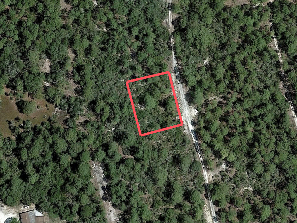 Just Under Half Acre Near Beautiful Florida Lake - Image 2