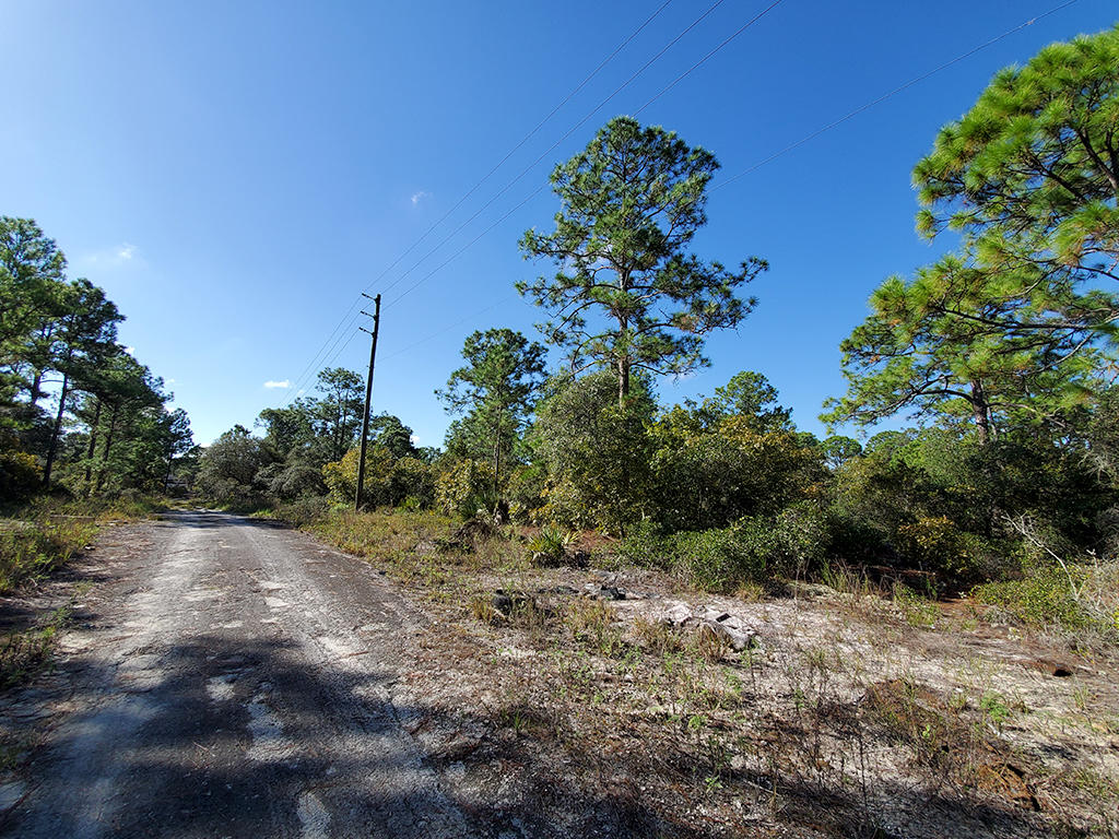 Just Under Half Acre Near Beautiful Florida Lake - Image 5
