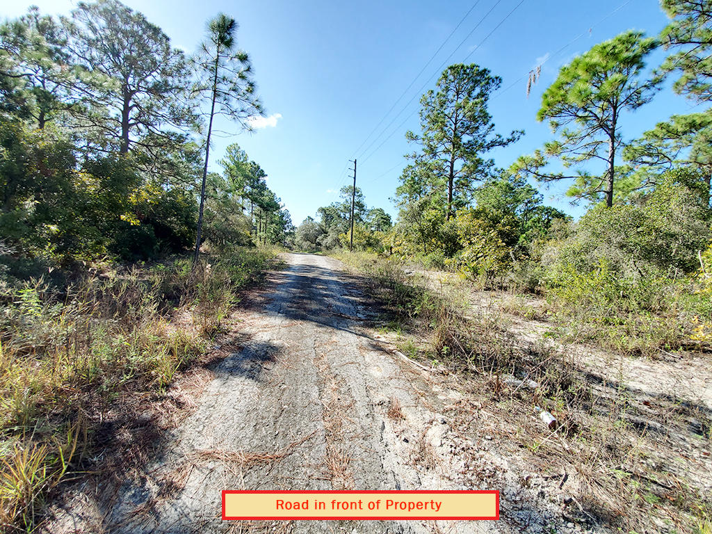 Just Under Half Acre Near Beautiful Florida Lake - Image 6