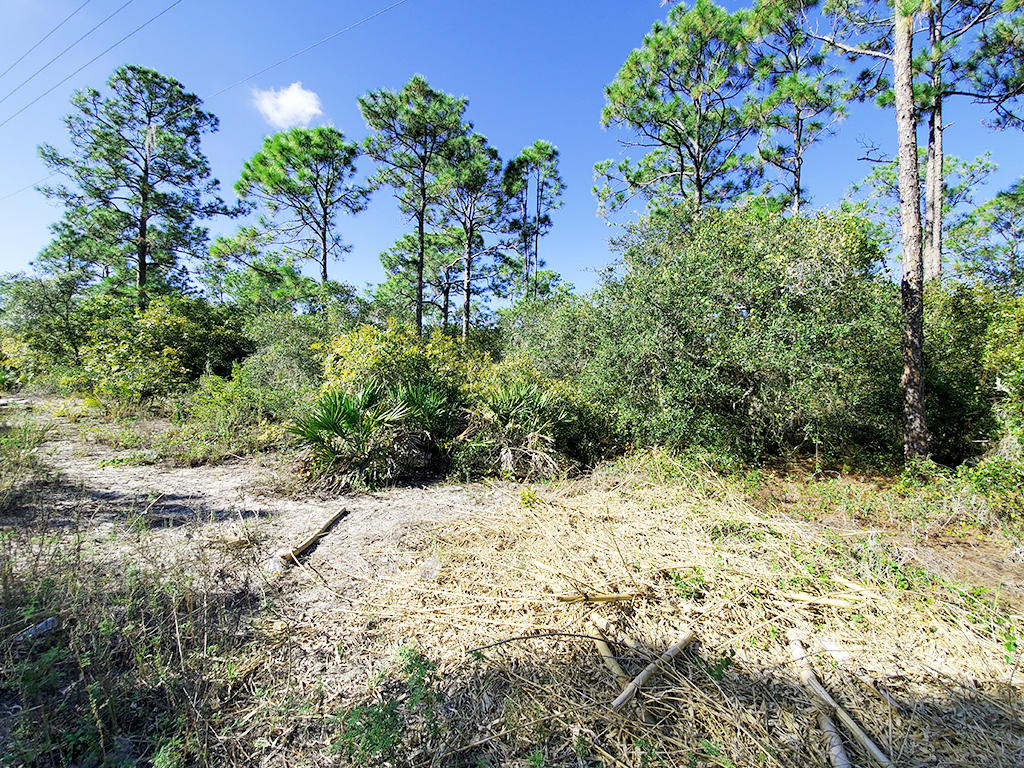 Just Under Half Acre Near Beautiful Florida Lake - Image 1