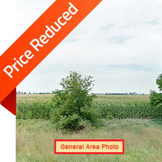 Northeastern Nebraska Land Ready for Your Dream Home - Image 1