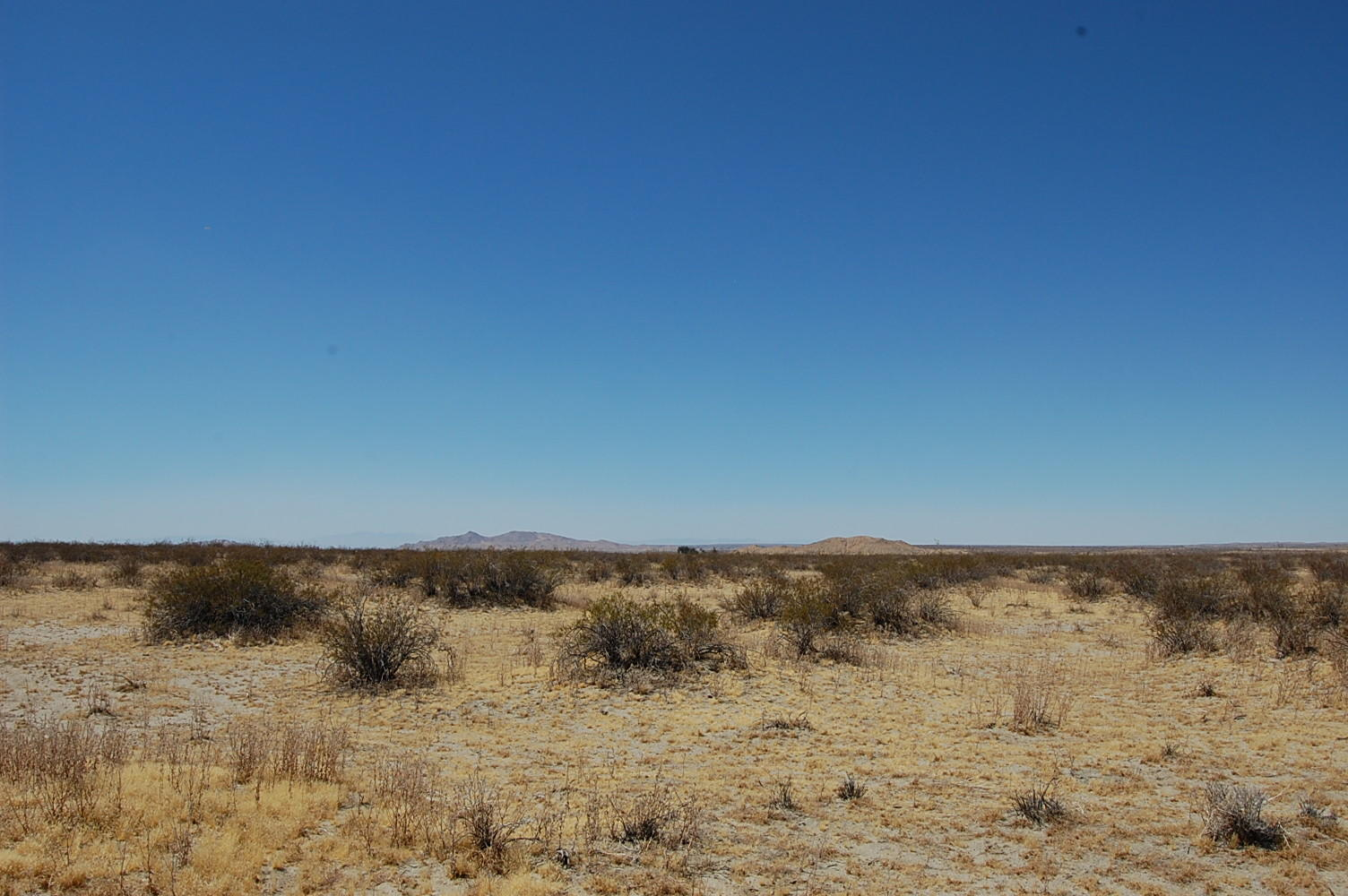 Two and a Half Acres Just Outside of Palmdale - Image 3