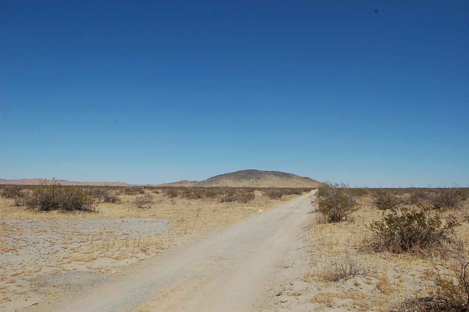 Two and a Half Acres Just Outside of Palmdale - Image 5