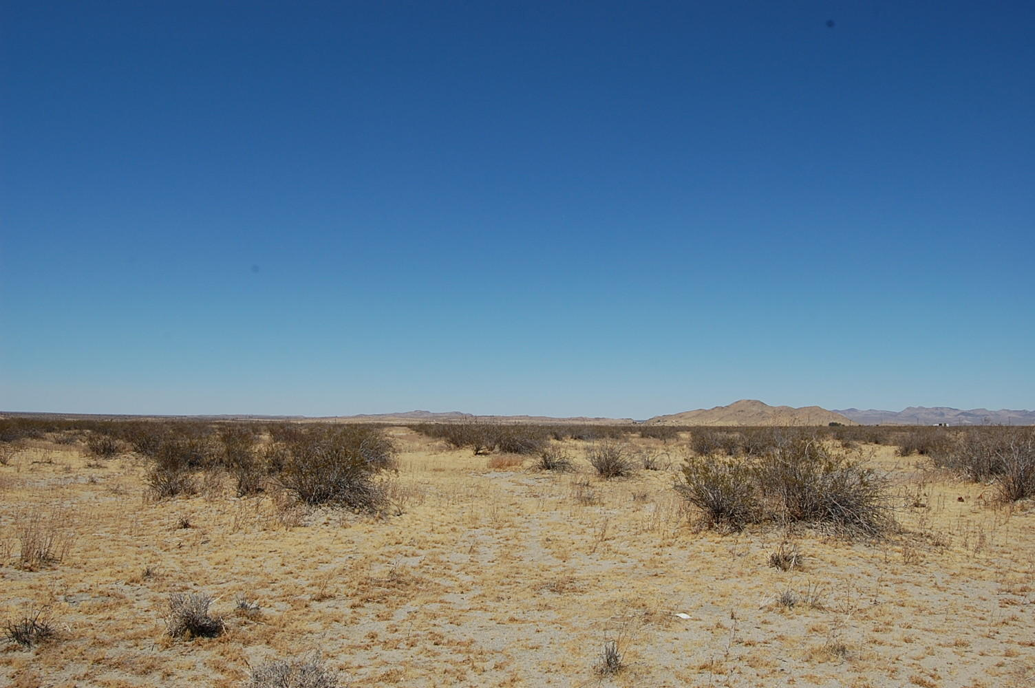 Two and a Half Acres Just Outside of Palmdale - Image 0