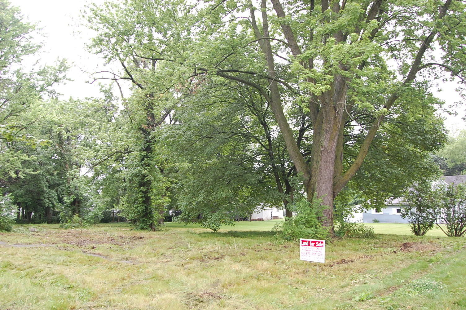 Illinois Midwest Living on One Third Acre Lot - Image 1