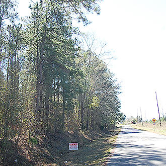 Large Treed Lot in Americus - Image 1