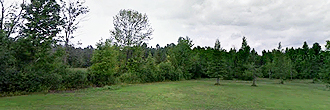 Sprawling 10 Acres Near State Forest